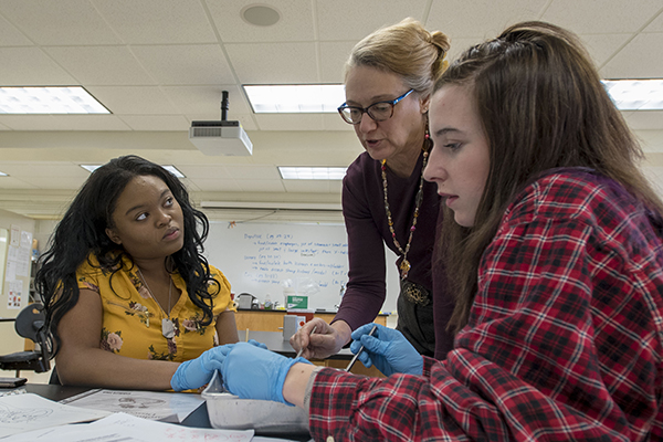 Biology professor instructing students on the inner workings of a heart